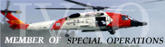 IVAO HQ-SOD Special Operations community banner image 6