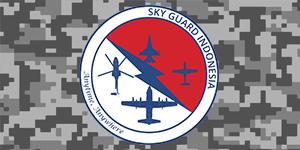 IVAO Sky Guard Indonesia special operations group